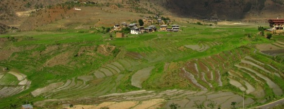 Stepped farming in Paro, Bhutan (Credit: Soham Banerjee)